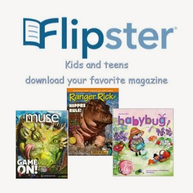 Image result for flipster fro kids